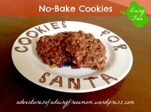 DairyFree No Bake Cookies