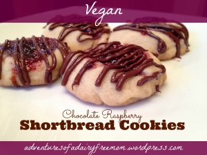 Vegan Chocolate Raspberry Shortbread Cookies